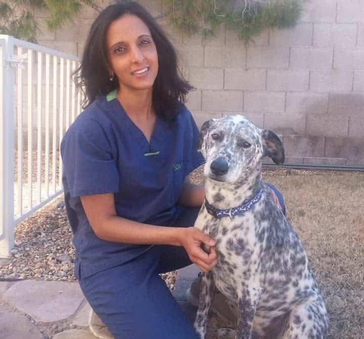 Dr. Veena Alexis, DVM