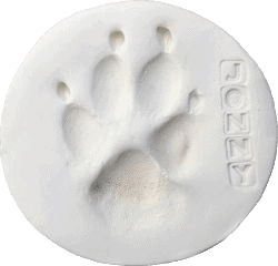 Clay Paw Print after Euthanasia